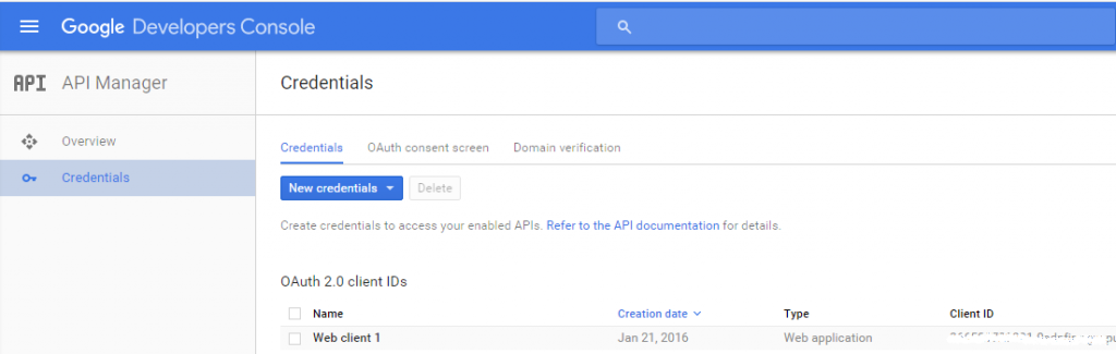Google API credentials panel